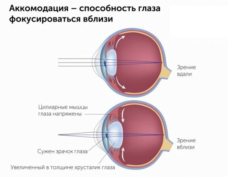 Тренировка цилиарной мышцы в Екатеринбурге в салонах оптики Зеркальный